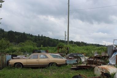 Cars in the shipyard