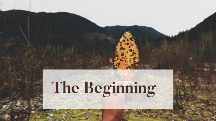 Into Nature – The Beginning